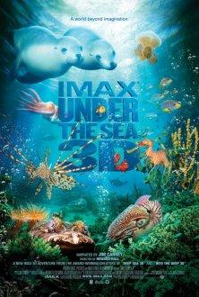 Sualtı aləm IMAX