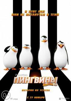 Madaqaskar pinqvinləri