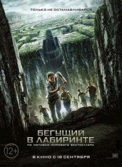 Labirintdə dolaşan